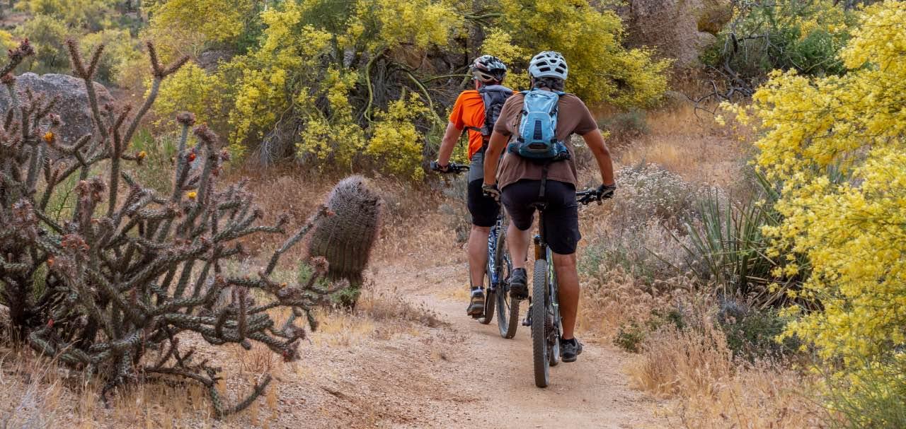 Biking in Arizona